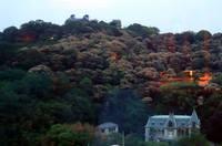 萬翠荘と松山城
