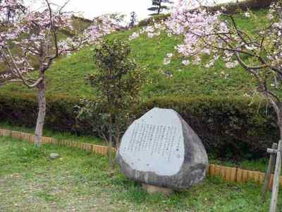 みすずの桜の木