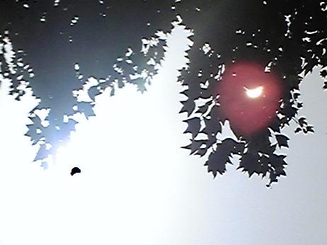 福岡の日食