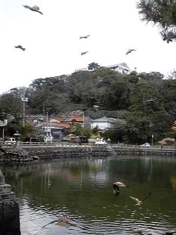 萩・明神池