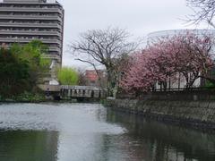 水郷柳川のお堀めぐり