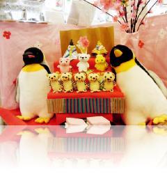 長崎ペンギン水族館の雛人形