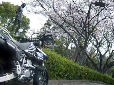 バイクと桜と少女の像