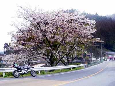 バイクと霊台橋