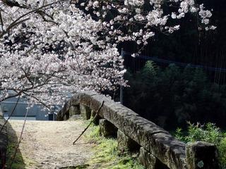 熊本・大窪