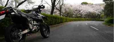桜とDR-Z400SM