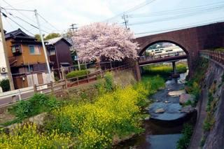 旧九州鉄道大蔵線(茶屋町レンガ橋)